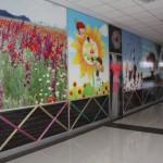 Cagri İnsaat Bölme Duvar-001
