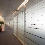 çizgili ofis bölme duvar sistemleri