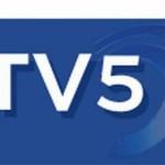 Tv 5 Ofis Bölme
